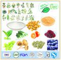 Fabricant de gmp de haute qualité& 100% naturel huile capsicum 10%- 40%- 98% hplc& uv