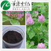 Hot sale Natural Red Clover Extract 8%~40% Isoflavones