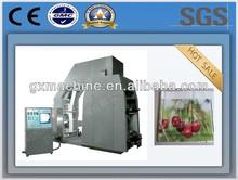 China's Pe/ Bopp Film high speed flexo printing machine