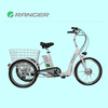 new style 36V 10AH Li-ion Rear Differential Cargo bikes with Pedal (DW101)