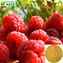 100% Natural Raspberry Extract/Raspberry P.E. 98%