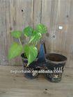 2014 New Garden Decoration Metal Flower Planter