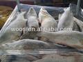 congelados pescados y mariscos frescos de perca gigante grande