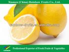 fresh lime and lemons