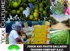 fresh Peruvian lemon best quality and Competitive Price citrus aurantifolia variety sutil