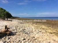 Land for Sale in Moyo Island Sumbawa Indonesia
