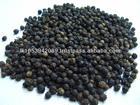 High Quality Black Pepper Very Cheap Price