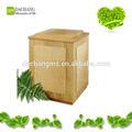 animal burial cremação caixão de madeira