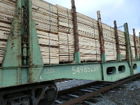 Larch timber rubber wood/ Russia rubber wood timber