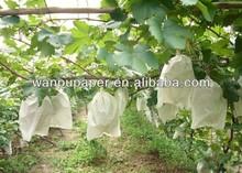 Grape growing bag