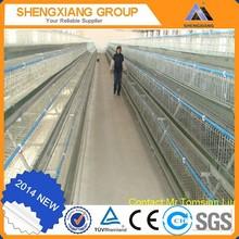 chicken egg layer cages / chicken breeding cage