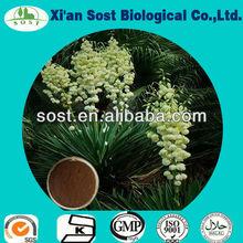 Hot selling 50% Saponins Yucca powder