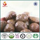 Hot Sell Chestnut Organic Snacks Food