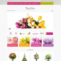 Ecommerce website service provider