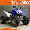 2014 New 250cc Quad Bike For Sale