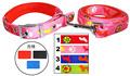 siete colores de material de nylon collar de perro y una correa con suave de la espuma de la hebilla de metal c1514