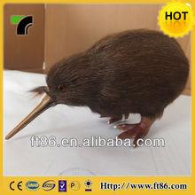Apteryx Brown kiwi Apterygidae Kiwi bird