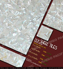 Shell Tile Mother of Pearl Collection