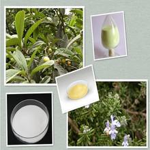 Rosemary extract/loquat leaf extract ursolic acid powder 90%/98%