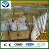 metal rabbit cage/rabbit hutch/bunny cage
