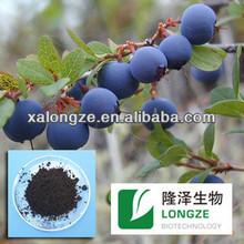 China supplier bilberry blueberry P.E enhance immune system