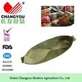 caña de bambú seco de follaje