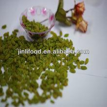 new crop green raisin jumbo sultana raisins fruit dried