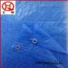 40gsm blue fire resistant tarpaulin