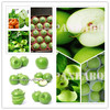 best price granny smith on hot sale