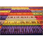 wholesale crayola crayons