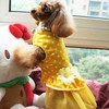 Pretty dog dress patterns