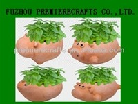 Animal shape planter, terracotta pot with seeds and growing medium