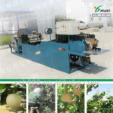 Mango/Apple/Pear/Guava/Pomegranate/Avocado protecting bag making machine