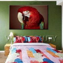 Decorative Owl Canvas Art Prints