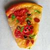 pizza vinyl squeaky dog toy