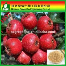 Natural crataegus pinnatifida plant Hawthorn fruit extract 20% flavonoids