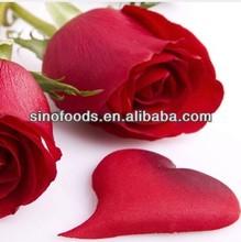 mei gui seed flower SEED hot sell desert rose seeds for sale