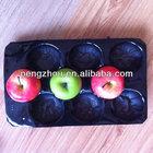 apple fruit tray
