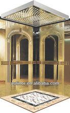 Titanium Residential Elevator for Passengers