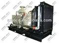 Biogas stromerzeuger 10-1000kw, gas generator