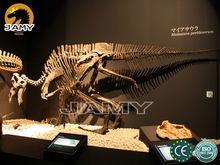Maiasaura Fiberglass Dinosaur Fossil Replica for Sale