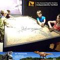 Meu Dino - Dino equipamento do parque fóssil de dinossauro escavação kit