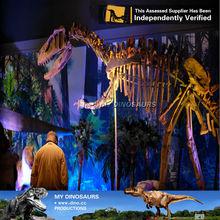 MY Dino-Zigong 3D movie Life size animal hot selling dinosaur fossil