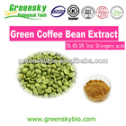 100% Pure Green Coffee Bean Extract,Free Sample Green Coffee Bean Extract Powder