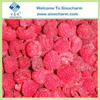 IQF Frozen Raspberry Frozen Berries