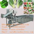 el mejor utilizada frutas y verduras cepillo de lavado de la máquina
