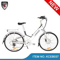 man bike newest model 26 inch Birdy vintage style 200w/250W/350w e bike/pedalec