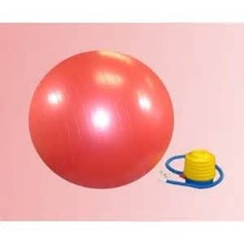 Cheap PVC anti burst gym Pilates Ball with pump