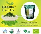 Organic Moringa Leaf Powder for Bulk Export