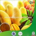 Feuilles de mangue extrait, De haute qualité mangue extrait, Africain mangue fruits extrait